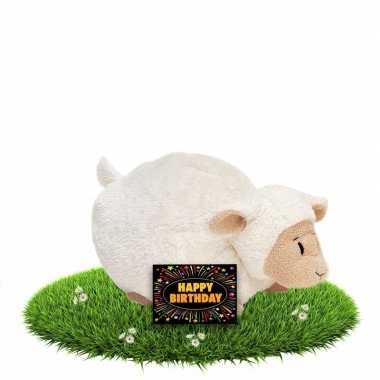 Baby kado knuffel lammetje/schaapje + gratis verjaardagskaart