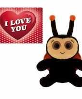 Baby valentijn valentijns cadeau lieveheersbeestje knuffel valentijnskaart